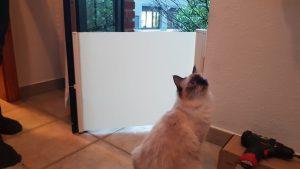 felxible Katzensperre oder Katzenbarriere für die Haustür
